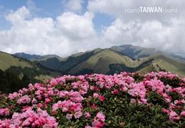 Span3_hehuanshan_east_peak________-019