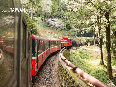 Resize 400x300 alishan forest railway            005 1